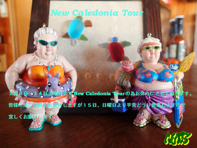 NEW Caledonia Tour